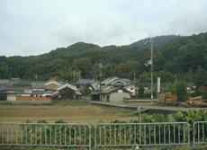 178tsubaichi_3